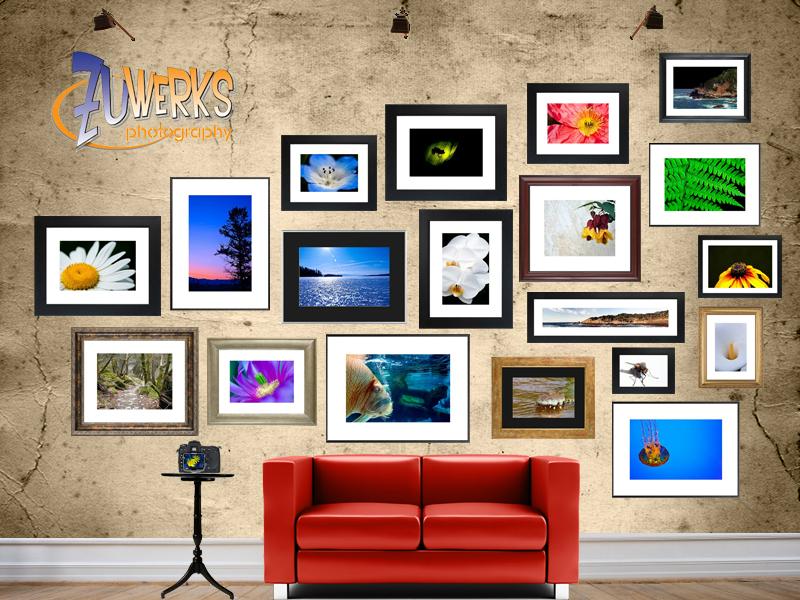 Zuwerks Photography